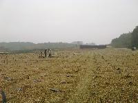 Ký hợp đồng quan trắc xử lý nền đất yếu – Dự án đường cao tốc Nội Bài Lào Cai
